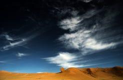 un árbol en el cielo azul Imagen de archivo
