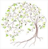 Un árbol estilizado pintado a mano con las acuarelas Imagen de archivo
