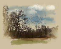 Un árbol grande en el borde del bosque Bosquejo de la acuarela Imagen de archivo