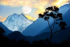 Un árbol solo contra la perspectiva de las montañas Himalayan y del cielo de la tarde Paisaje coloreado de alta temperatura nepal Fotografía de archivo