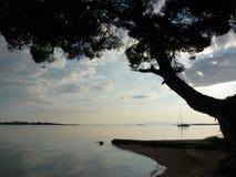 Un árbol, un barco y la puesta del sol Imágenes de archivo libres de regalías