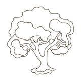 Un árbol viejo con una corona verde grande Cultive y solo icono que cultiva un huerto en el ejemplo de la acción del símbolo del  libre illustration