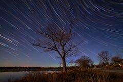 Un árbol y rastros de la estrella fotos de archivo