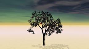 Un árbol y una manzana ilustración del vector