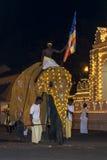 Un éléphant cérémonieux présente l'Esala Perahera à Kandy, Sri Lanka photographie stock libre de droits