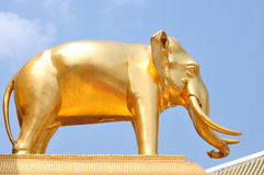 Un éléphant d'or Photos libres de droits