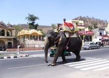 Un éléphant monté par son mahout à la périphérie de l'Inde de Jaipur Ràjasthàn images libres de droits