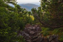 Un été égalisant l'identification de la montagne Photo stock