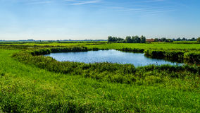 Un étang dans la terre plate de l'des agriculteurs mettent en place près du Veluwemeer Photo libre de droits