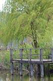 Un étang de pêche au-dessus du lac Images libres de droits