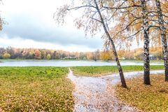 Un étang en parc d'automne photographie stock libre de droits