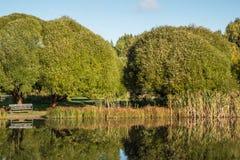 Un étang en parc un jour d'automne Images stock