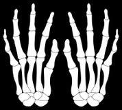 Un accoppiamento delle mani di Skelton Immagine Stock