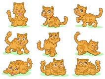 Un'accumulazione di nove gattini svegli Immagine Stock