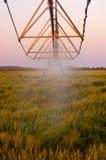 Un'acqua di pompaggio dell'impianto di irrigazione Fotografia Stock