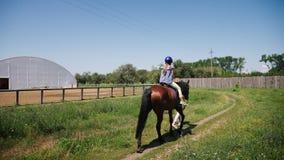 Un adolescente in un casco protettivo monta un cavallo marrone archivi video