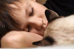 Un adolescente está durmiendo en la cama con un gato animal Imagen de archivo libre de regalías