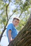 Un adolescente presenta para un fotógrafo mientras que camina en el parque Subió un árbol y se sienta Imágenes de archivo libres de regalías