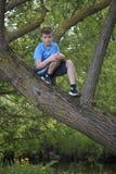 Un adolescente presenta para un fotógrafo mientras que camina en el parque Subió un árbol y se sienta Imagen de archivo libre de regalías