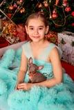 Un adolescente sveglio della ragazza in un vestito fertile con un mini cane che si siede vicino all'albero di Natale sulla vigili immagine stock