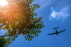 Un aereo volante sui precedenti di bello cielo di estate e su un raggio del sole che fa il suo modo attraverso il fogliame verde immagini stock
