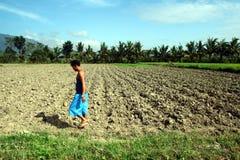 Un agricoltore cammina passato un giacimento inaridito del riso Immagini Stock Libere da Diritti