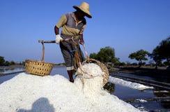Un agricoltore del sale Immagine Stock Libera da Diritti