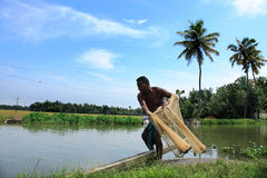 Un agricoltore getta la rete da pesca dentro agli stagni Fotografia Stock Libera da Diritti
