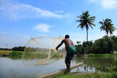 Un agricoltore getta la rete da pesca dentro agli stagni Fotografia Stock