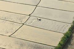 Un agricoltore isolato Fotografie Stock Libere da Diritti