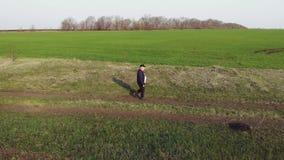 Un agricoltore maturo esamina un campo verde fresco dopo l'inverno, fa i piani per la raccolta e la preparazione per seminare archivi video