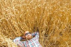 Un agricoltore o una bugia glabra dei pantaloni a vita bassa e si rilassa nel campo di grano Fotografia Stock