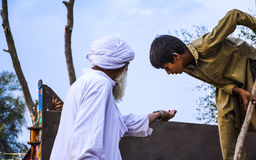 Un agricoltore pakistano che mostra i grani del grano al bambino lavorante Immagini Stock