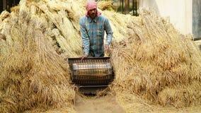 un agricoltore risolve per riso a sua casa immagine stock