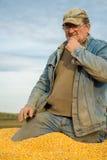 Un agricoltore in un rimorchio di trattore in pieno di cereale Fotografia Stock Libera da Diritti