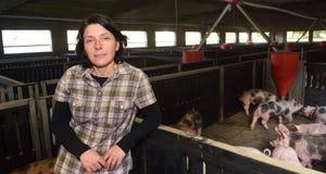 Un agriculteur chez un porc des fermes images libres de droits