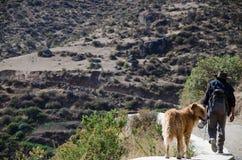 Un agriculteur et son chien marchant au bord d'une route photo stock