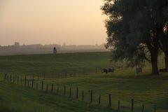 Un agriculteur faisant un cycle pendant le coucher du soleil Image stock