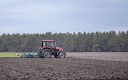 Un agriculteur sur un tracteur pr?pare la terre avec un cultivateur Encemencement sur les champs agricoles image libre de droits