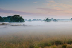 Un'alba nebbiosa Fotografia Stock Libera da Diritti