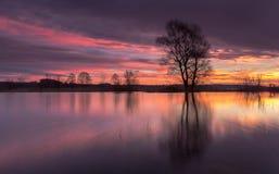 Un'alba variopinta dal fiume Fotografia Stock