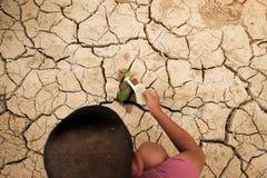 Un albero che cresce sulla terra incrinata Fendi il suolo secco nella siccità, colpita di mutamento climatico fatto riscaldamento Immagine Stock