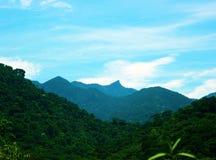 Un albero della montagna del marshmellow con un cielo blu immagine stock libera da diritti