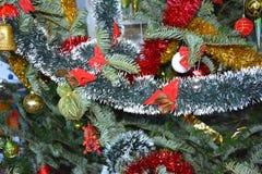 Un albero di Natale Fotografia Stock Libera da Diritti