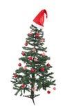 Un albero di Natale isolato Fotografia Stock