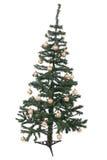 Un albero di Natale isolato Fotografia Stock Libera da Diritti