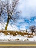 Un albero nudo che si siede su sopra la strada Fotografia Stock