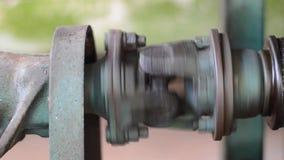 Un albero rotante video d archivio
