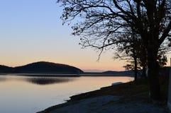 Un albero sulla costa del lago Fotografie Stock Libere da Diritti