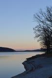 Un albero sulla costa del lago Fotografia Stock Libera da Diritti